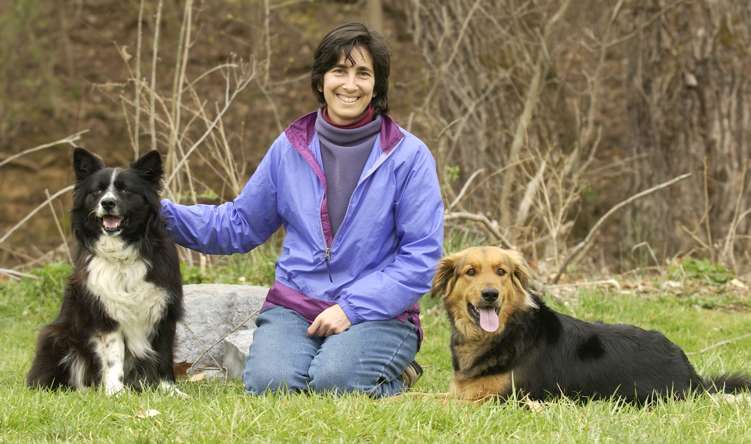 ttouch helps fear and reactivity with dogs one heart healing center